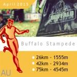 Buffalo-Pic-1