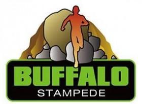 Buffalo 2016 logo